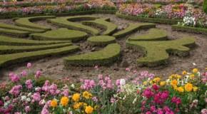Jardinería pública, negocio versus técnica.