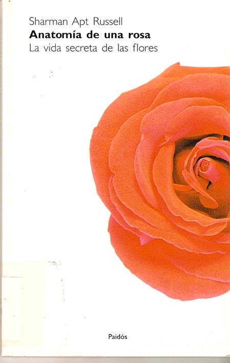 anatomía de una rosa