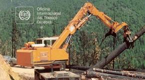 Seguridad en el trabajo forestal