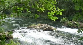 O monte é a nosa vida, campaña del gobierno de Galicia