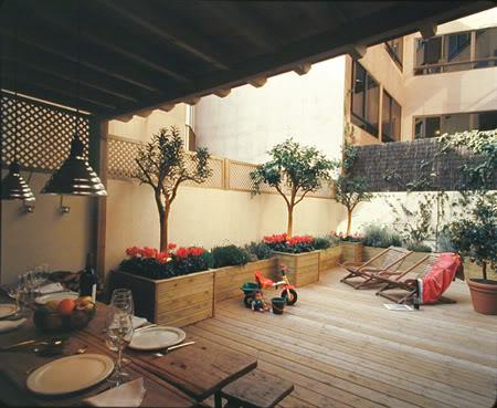 Imagen plantas en la terraza.