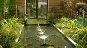 Visualizar el espacio para el jardín