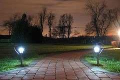 La magía de las luces en el jardín