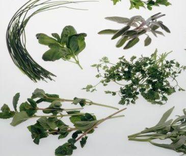 Aromas naturales en la comida