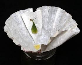 La cápsula debe prensarse al filtro para que se vacié de semillas