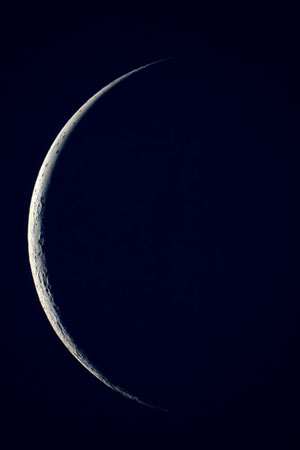 Fases lunares y su influencia en el jardín