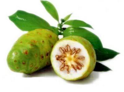 Noni, fruto con muchas propiedades en vitaminasy merales.