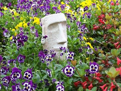 Consejos prácticos para cuidar el jardín